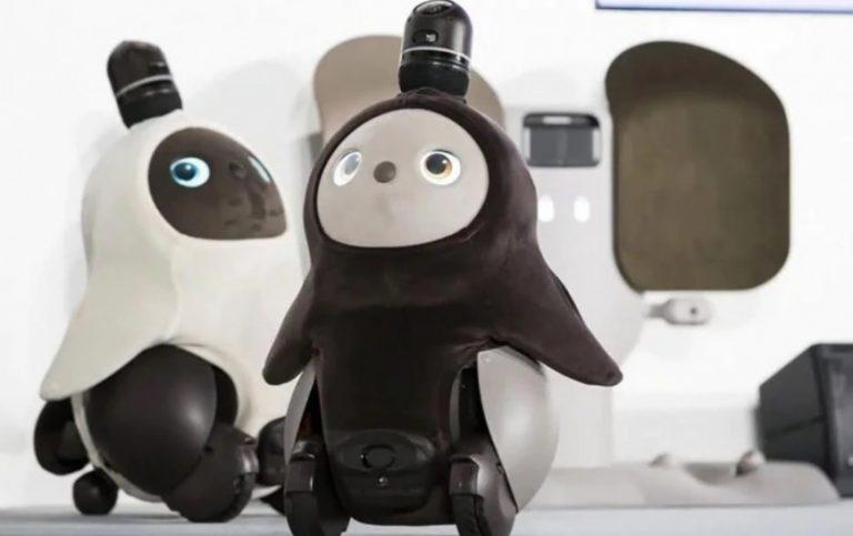"""Qué es un """"robot emocional"""" y para qué sirve"""