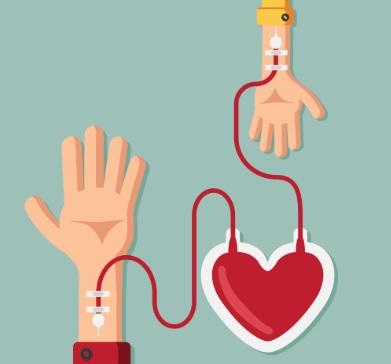 En el Día Nacional del Donante de Médula Ósea se realizará colecta de sangre