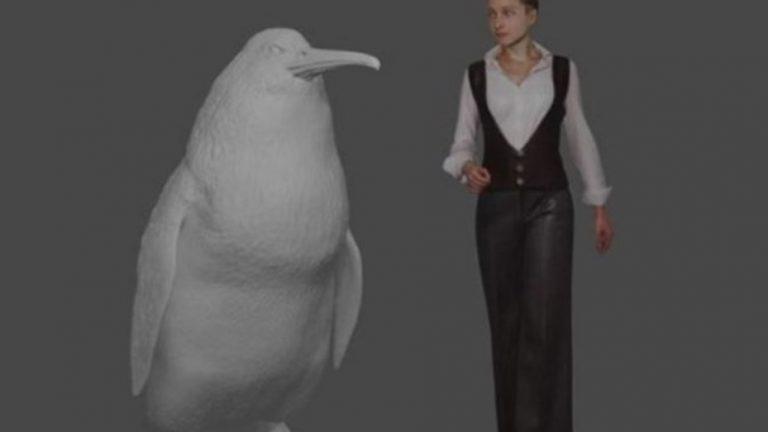 Hallaron un fósil de un pingüino gigante del tamaño de un ser humano