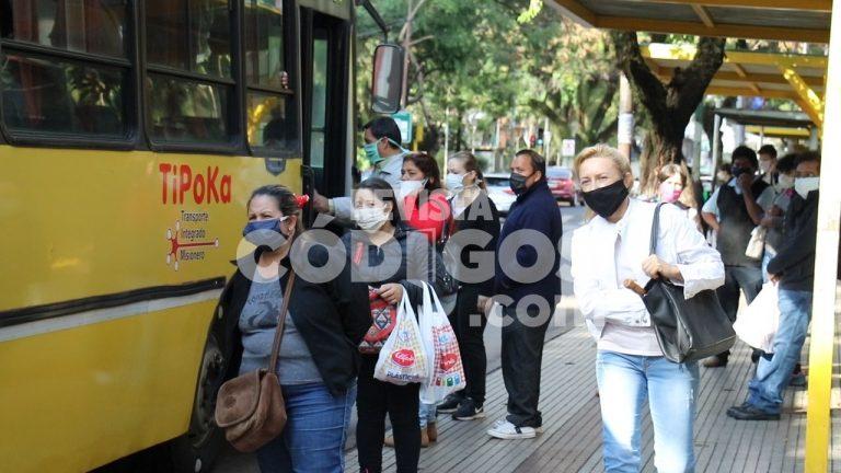 Fondo Covid al Transporte Urbano: Nación asignó más $300 millones a Misiones