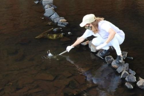 Especialistas realizan un monitoreo ambiental en arroyos para verificar su estado