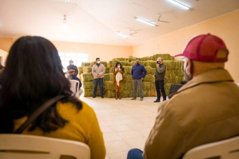Entregaron insumos a más de 30 productores de ovinos y caprinos de Profundidad