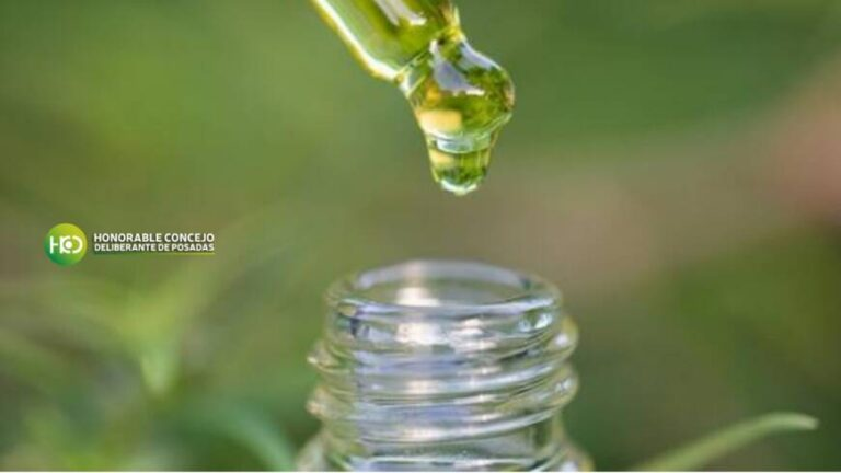 Posadas avanza con la adhesión a la Ley Provincial sobre el Uso Medicinal del Cannabis